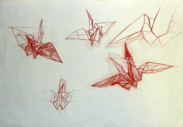 Contour Line Drawing Projects : Sdooley drawing ii